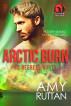 Arctic Burn: 62 Degrees North by Amy Ruttan