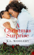 A Christmas Surprise by K.L. Woolery