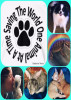 Saving The World One Animal At A Time by Kimberly Morin