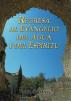 Regresa al evangelio del agua y del Espíritu by Paul C. Jong