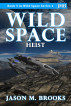 Wild Space: Heist by Jason M. Brooks