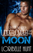 Under Cover Of The Moon by Loribelle Hunt