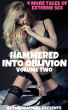Hammered Into Oblivion: Volume Two - 4 More Tales Of Extreme Sex by AE Publications