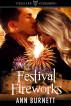 Festival Fireworks by Ann Burnett