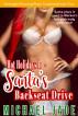 Hot Holidays 1: Santa's Backseat Drive by Michael Jade