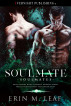 Soulmate by Erin M. Leaf