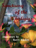 Sanctuary of the Whirligigs by Barry Rachin
