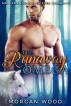 The Runaway Omega: MM Gay MPREG Shifter Romance by Morgan Wood