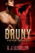 Bruny by A. J. Llewellyn