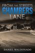 From the Streets of Chambers Lane by Daniel Maldonado