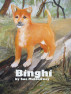 Binghi by Sue Muldowney