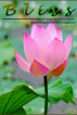Bliss - June 2017 by Ktitiranjan Nath