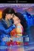 One Night in New Delhi by Kemberlee Shortland