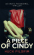 A Piece of Cindy by Huck Pilgrim