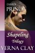 Davide: Prince by Verna Clay