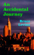 An Accidental Journey by Bruce Levine