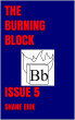 The Burning Block Issue 5 by Shane Eide
