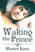 Waking the Prince by Shawn Lane