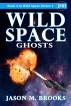Wild Space: Ghosts by Jason M. Brooks