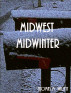 Midwest Midwinter by Thomas M. Willett