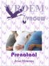 Vroemvrouw Prenataal by Jeske Meinema