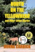 North on the Yellowhead and Other Crime Stories by Donna Carrick