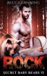 Rock by Becca Fanning