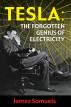 Tesla: The Forgotten Genius of Electricity by James Samuels
