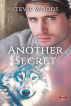 Another Secret by Stevie Woods