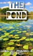The Pond by Lisa E. Jobe