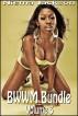 BWWM Bundle - Volume 3 (Interracial Romance BWWM) by Niema Jackson