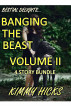 Banging The Beast- Vol. II (4 pack) by Kimmy Hicks