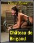 Chateau de Brigand by Donna Russet