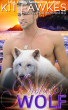 Protector Wolf (Finding Fatherhood #3) by Kit Fawkes