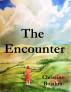 The Encounter by Christine Bojahra