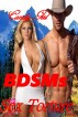 BDSMs Sex Torture (BDSMEROTICA Romance Series, Submissive Female Book) by Candy Girl