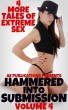 Hammered Into Submission: Volume Four - 4 More Tales Of Extreme Sex by AE Publications