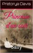 Princesse d'un soir by Pretorya Davis