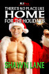 There is No Place Like Home For the Holidays by Shawn Lane