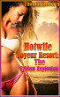 The Sybian Explosion (Book 2 of