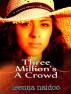 Three Million's A Crowd by Leenna Naidoo