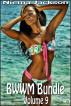 BWWM Bundle - Volume 9 by Niema Jackson