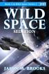 Wild Space: Sedition by Jason M. Brooks