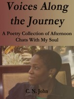 C N John - Voices Along the Journey: A Poetry Collection of Afternoon Chats With My Soul