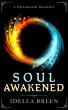 Soul Awakened (Fire & Ice Book 2) by Idella Breen