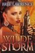 Wilde Storm by S.E. Babin