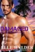 Damaged (Bank's Crossing 2) by Elle Wylder