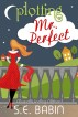 Plotting Mr. Perfect by S.E. Babin