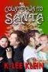 Countdown to Santa by K-lee Klein