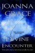 Divine Encounter: The Divine Chronicles Book 4 by JoAnna Grace